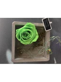 Tableau Végétal Rose Verte