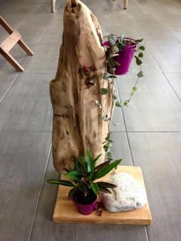 Bois flotté Branche sur socle